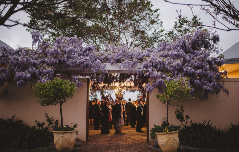 Enter via the wisteria covered courtyard (Lauren Campbell Photography)