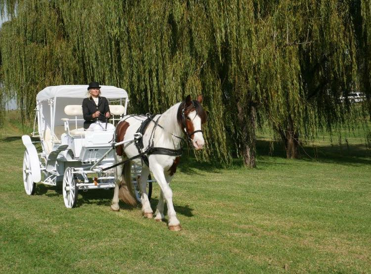 Prestige Horse Carriages