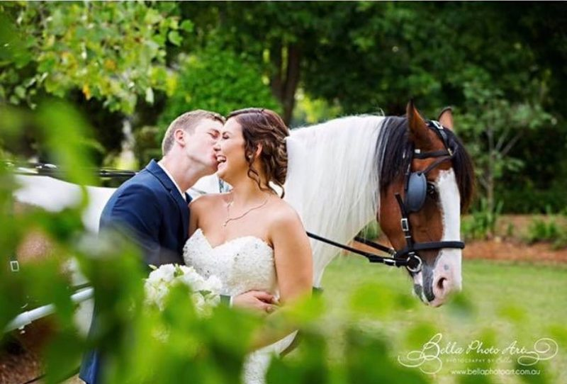 Prestige Horse Carriages - Photo by Bella Photo Art